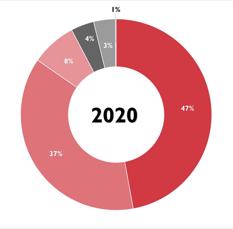 Gráfico ingresos 2020.